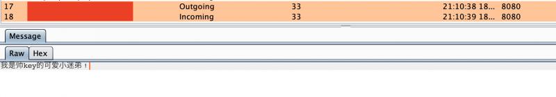 浅谈WebSocket跨域劫持漏洞(CSWSH)