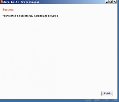 Burp Suite Professional 2.1.05 最新版本下载