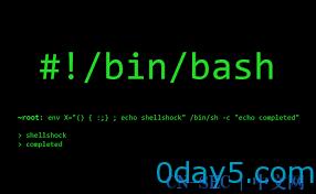 Bash远程解析命令执行漏洞测试方法