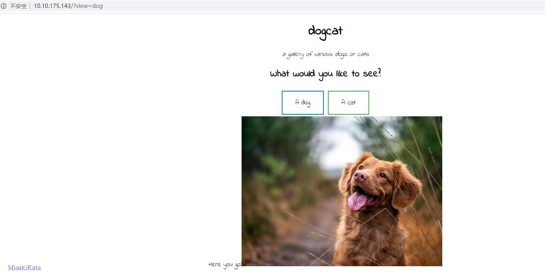 TryHackMe DogCat