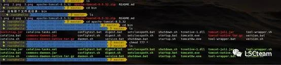 Apache-Tomcat-Ajp(cve-2020-1938)漏洞复现