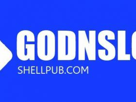 GODNSLOG | 开源一个新鲜的DNSLOG