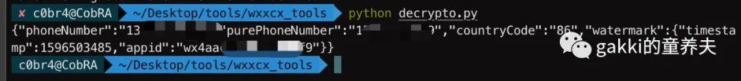 wx小程序session_key利用插件