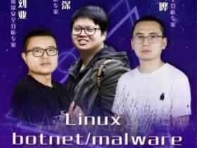 XCon高端培训 | 大牛神操作!带你刷爆Linux botnet/malware从捕获到分析