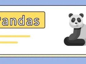 爱了!爱了!一款用 pandas 玩转 SQL 的神器