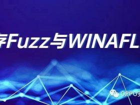 内存Fuzz与WINAFL实战