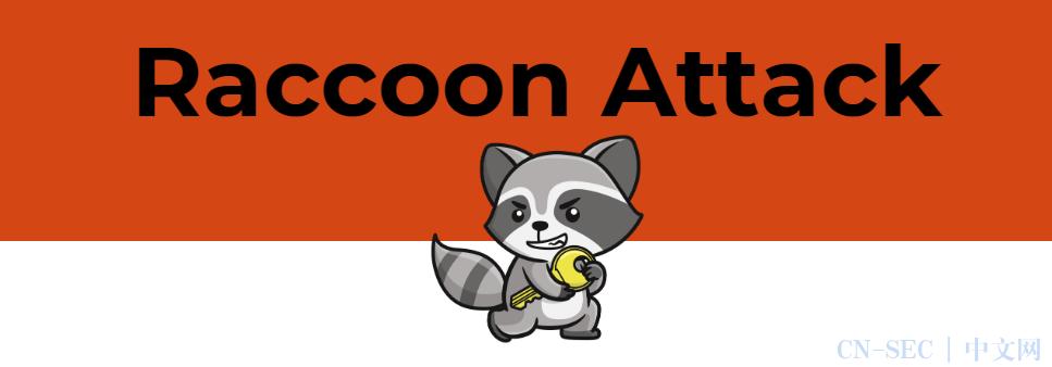 Raccoon攻击可以打破特定条件下的TLS 加密
