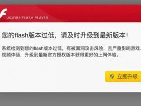 水坑攻击 | Flash钓鱼弹窗优化版