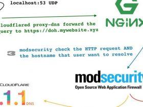 如何保护DNS