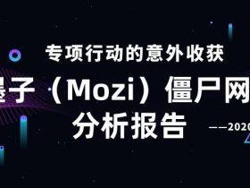 2020 年 9 月墨子(Mozi)僵尸网络分析报告