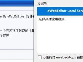 eWebeditor 客户端控件任意文件读取漏洞