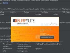Burp Suite Professional 2020.9 Build 3968(无后门)