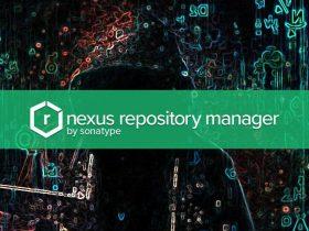CVE-2020-15012:Nexus Repository Manager 2 目录遍历漏洞通告