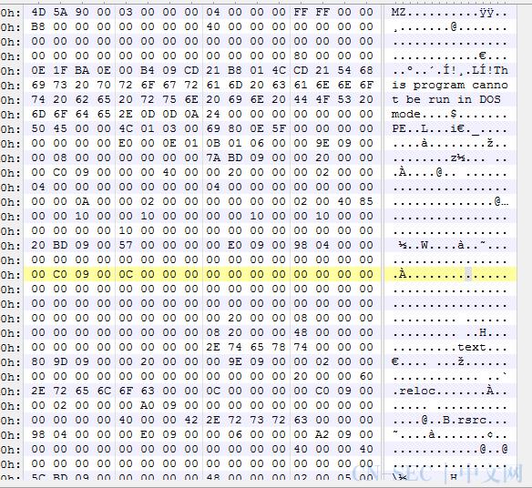 简析千层饼式伪装方式的病毒