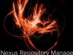 CVE-2020-15012 | Nexus Repository Manager 2目录遍历漏洞通告