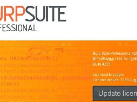 【禁止转载】Burp Suite 2020.9.2 | WINDOWS + Keygen & Loader