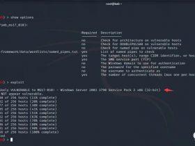 内网漏洞探测扫描 – 信息搜集篇 – 渗透红队笔记