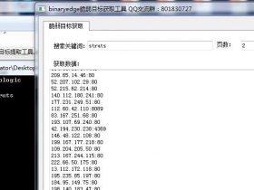 binaryedge脆弱目标提取工具