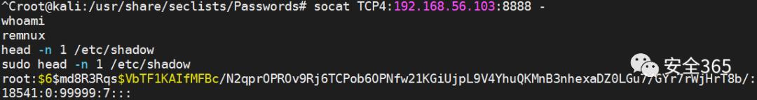 """渗透测试中几只""""猫""""的用法"""