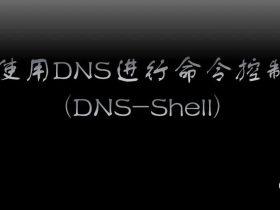 内网转发及隐蔽隧道 | 使用DNS进行命令控制(DNS-Shell)