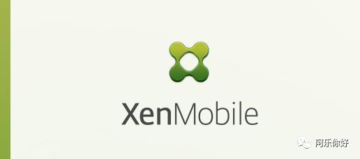 CVE-2020-8209  XenMobile文件读取漏洞复现