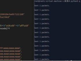 TCP/IP远程代码执行漏洞(CVE-2020-16898)复现