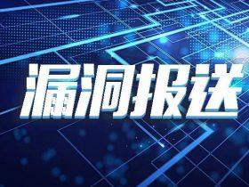 【漏洞报送】Citrix SD-WAN远程代码执行漏洞(CVE-2020-8271)