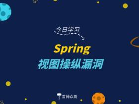 Spring 视图操纵漏洞