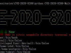 Citrix XenMobile目录遍历扩展(CVE-2020-8209)批量检测脚本