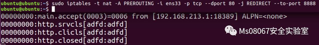 一文打尽端口复用 VS Haproxy端口复用