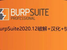 BurpSuite2020.12破解+汉化+快捷键