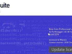 Burp Suite Professional 2020.12.1【文末彩蛋】