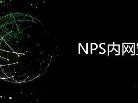 技术干货 | NPS的使用