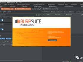 BurpSuite2020.12 build5207 汉化破解版下载