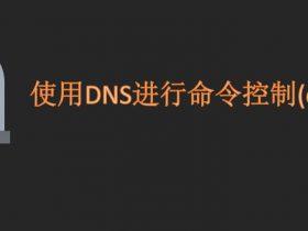 内网渗透(二十二) | 内网转发及隐蔽隧道:使用DNS进行命令控制(dnscat2)