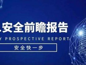 重磅发布:2021安全前瞻报告(下篇)