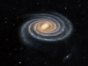 美媒:在外星人眼中 地球人可能就像蚂蚁一样无趣