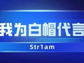 第10期:从入门到年度第四/新人第一的Str1am