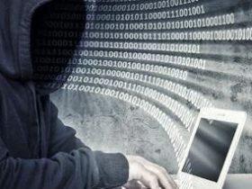 自动化信息收集+漏洞挖掘平台