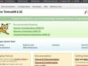 【附EXP】CVE-2020-1938Tomcat Ajp文件读取漏洞复现: