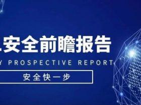 重磅发布:2021安全前瞻报告