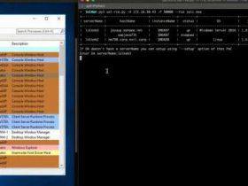 CVE-2020-6207的PoC(SAP解决方案管理器中缺少身份验证检查)