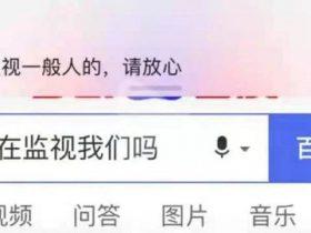 """春节大爆料:男女""""云约会""""骗钱、与滴滴大数据斗智、拉票信息致孩子被拐……"""