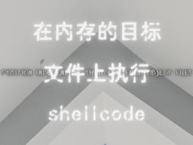 在内存的目标文件上执行shellcode