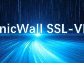 【漏洞预警】SonicWall SSL-VPN <10.2.0.5-d-29sv SQL注入漏洞(CVE-2021-20016)