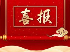 """开门红!炼石荣膺""""金智奖""""创新企业No.1与优秀产品双项殊荣"""