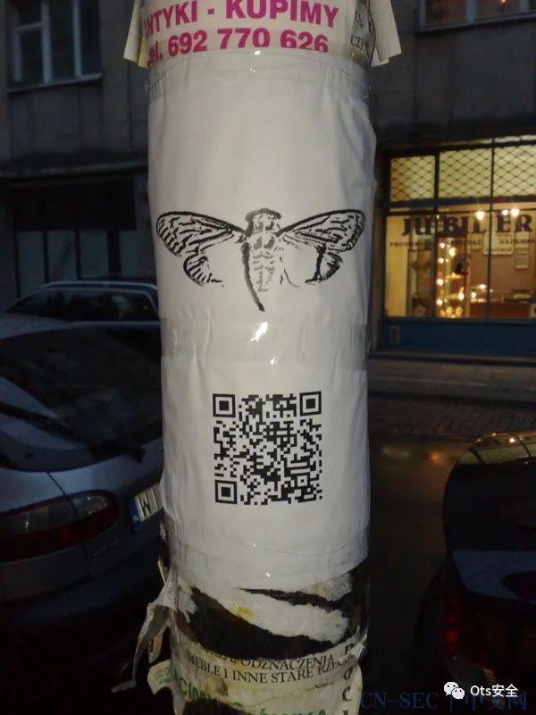 一个存在互联网最深层的 Cicada 3031