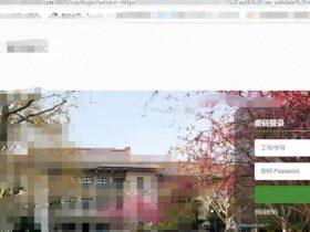 漏洞挖掘 | 登录某大学VPN系统